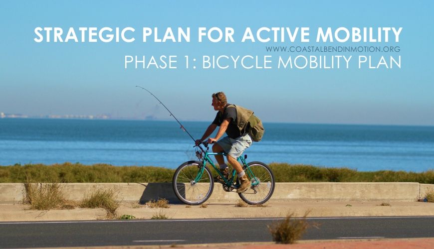 Link to Phase 1 Bicycle Mobility website